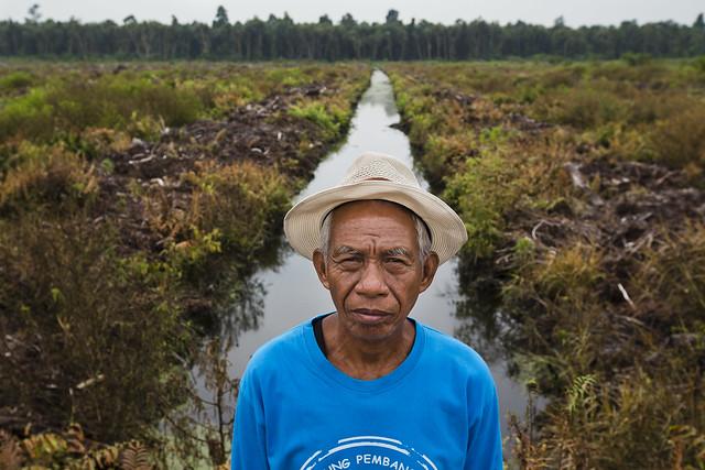 Pungkat, Riau