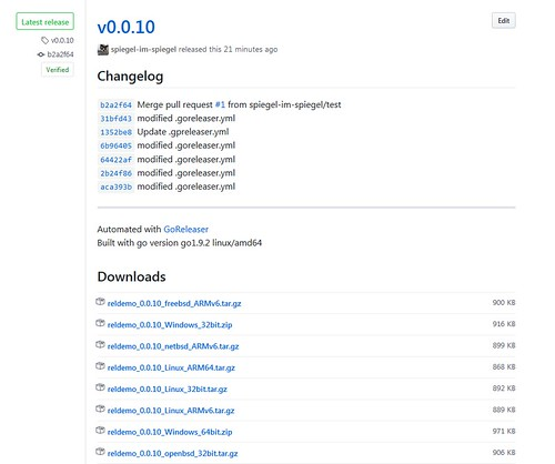 Release page in GitHub