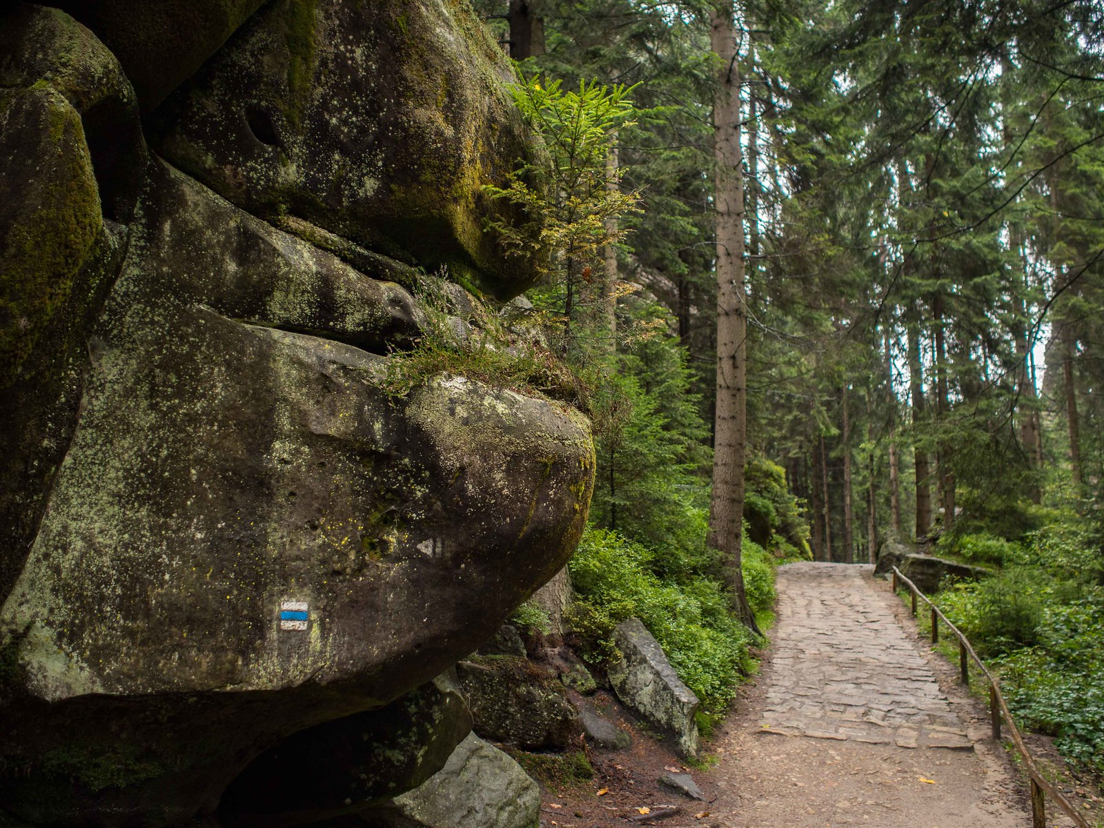 Hiking in the Czech Republic — Hidden Rock Towns Beyond Reality