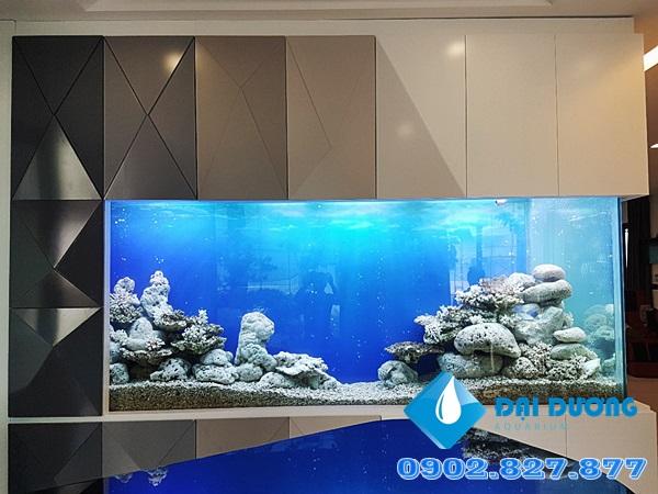 Hồ cá Ali Dài 4.3m