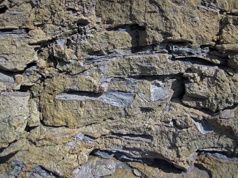 Mudshale clasts in pebbly sandstone (Sharon Conglomerate, Lower Pennsylvanian; Jackson North roadcut, Ohio, USA) 77