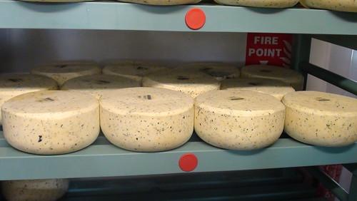 Northumberland Cheese Company Sept 17 (14)