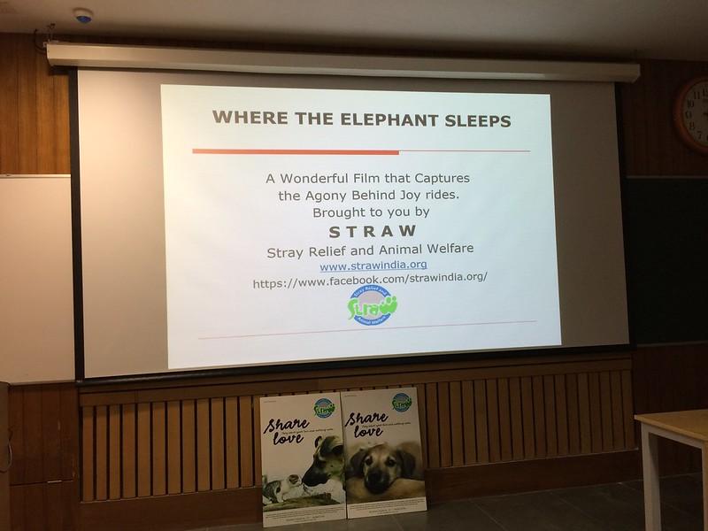Screening of Where the Elephant Sleeps at IIT Delhi