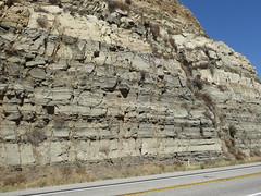 Miocene Mill Creek Formation