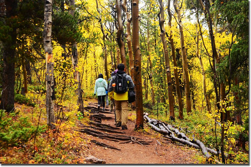 Colorado Trail (2)