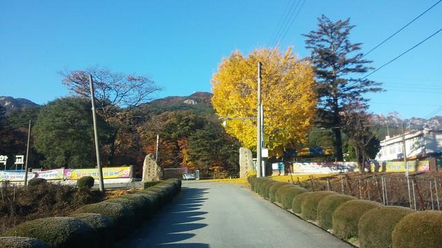 가을아침 | 화북초등학교