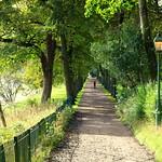 Autumn green at Avenham Park Preston