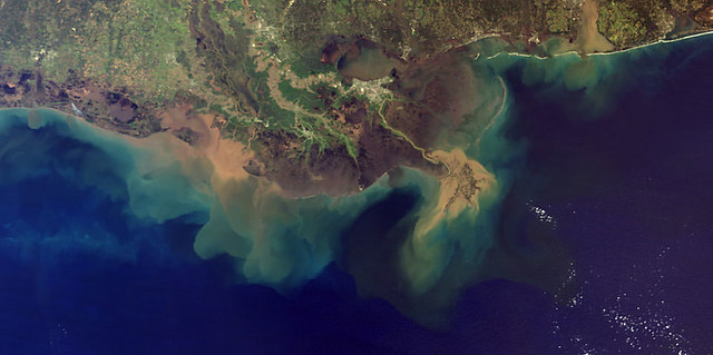 photo of dead zone Gulf of Mexico