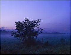 After sunset / Po zachodzie