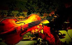 Music in Autumn