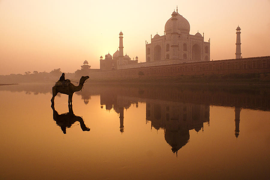 1-taj-mahal-at-sunrise-michele-burgess