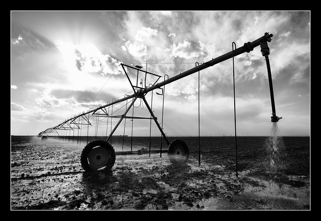 Water on the Ogallala