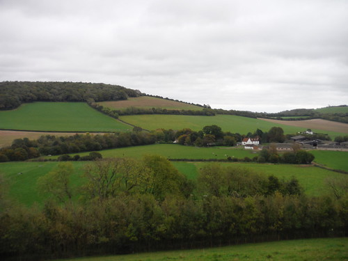 Whitewool Farm and Henwood Down