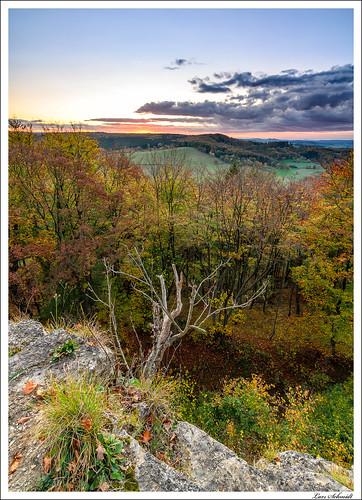 Blick vom Kanstein in den Herbstwald