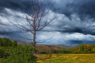 Lake Placid   New York  ~ Adirondack National Park ~ Historic