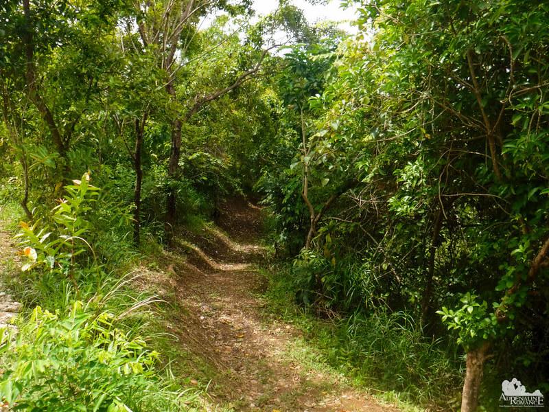 Foressa-Hiking-Trail