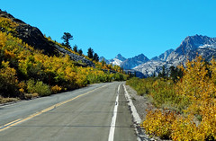 Road to Lake Sabrina, Autumn 2017