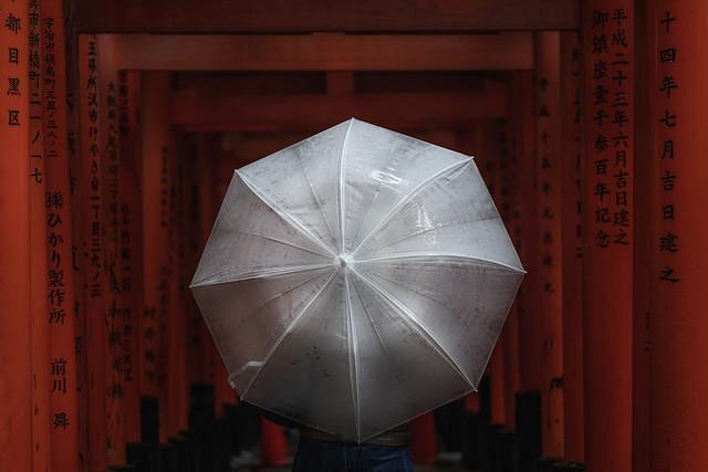 Rain and torii gates
