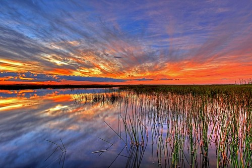 The Everglades National Park at sunset. From 4 places you must visit on a trip to Florida