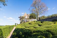 Dordogne Les jardins suspendus de Marqueyssac 5 Octobre 2017