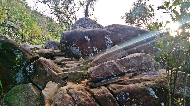 TAIPEI-bush walking-台北郊山健行-內湖金面山剪刀石-17度C隨拍 (11)