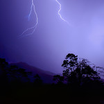 19. Oktoober 2017 - 2:39 - Early morning lightning bolts light up the sky over Thornton peak, Daintree rainforest