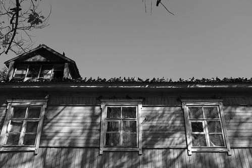 Alexandrovsk-Sakhalinsky 24-09-2017 (30)