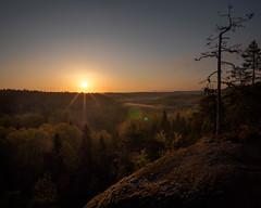 Nuuksio sunrise III