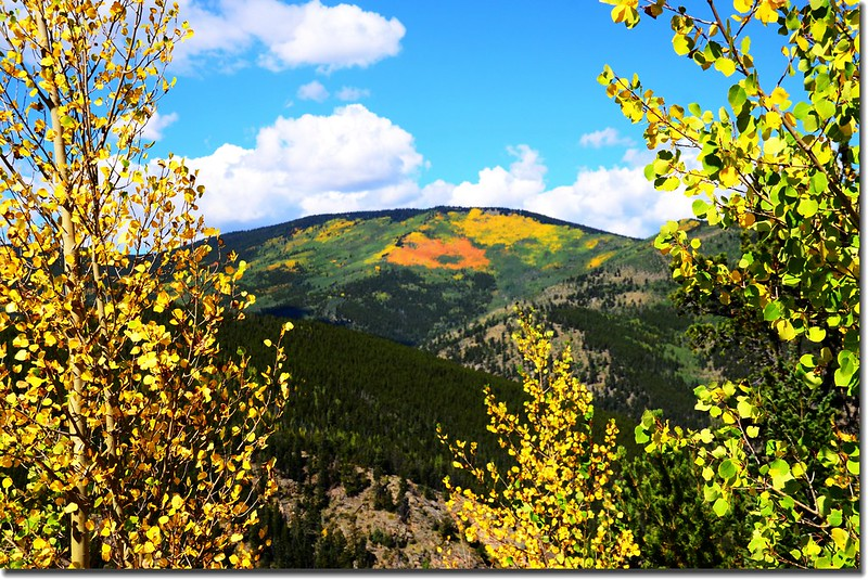 Fall colors, Mount Evans Scenic Byway, Colorado (12)