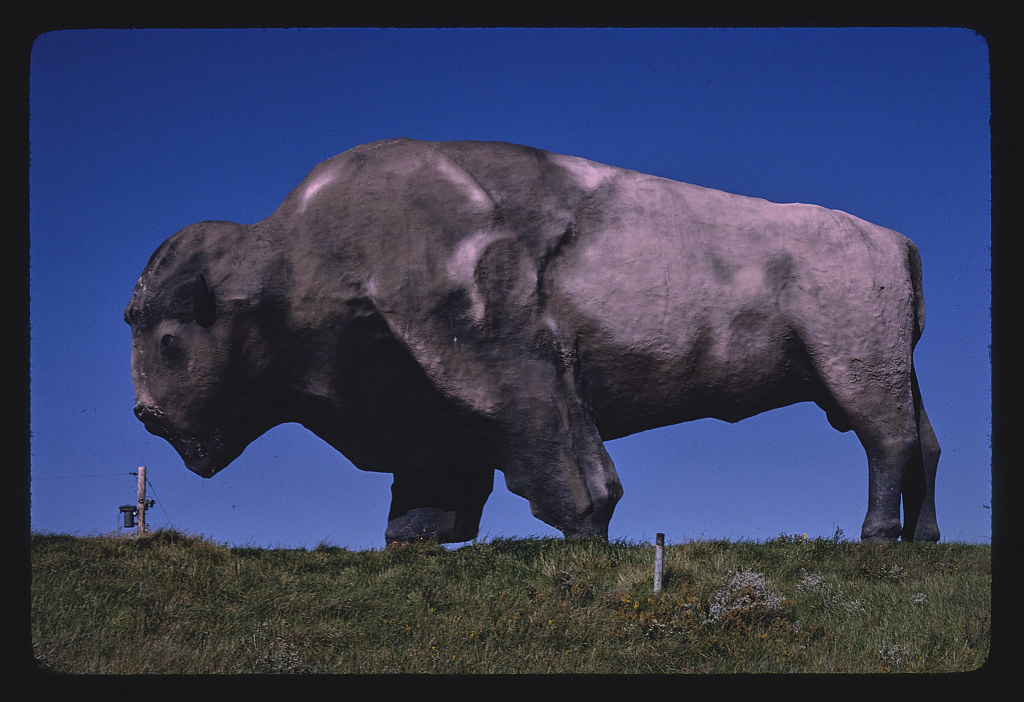 World's largest buffalo (46' long, 26' high, 60 tons), Jamestown, North Dakota (LOC)