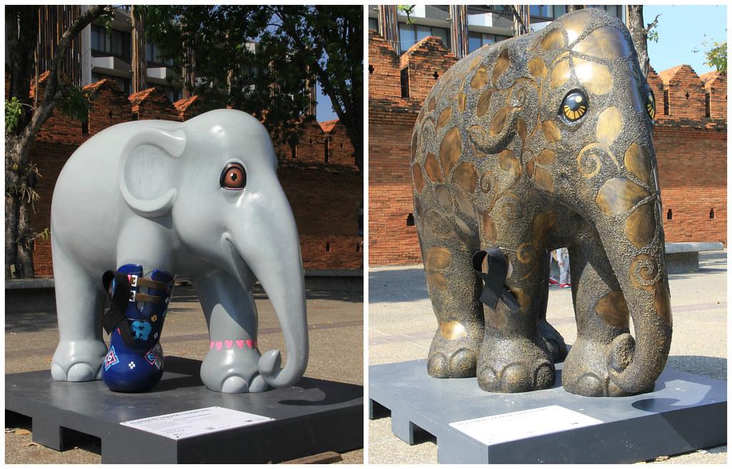 Elephant Parade, Tha Phae Gate