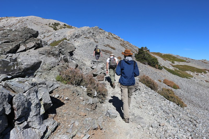 The four of us begin climbing the eastern ridge of Mount San Antonio