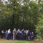 2017_Waldumgang