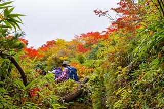 紅葉の登山道を登る