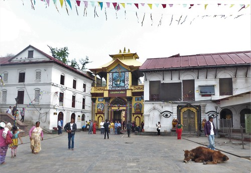 n-Pashupatinath (25)