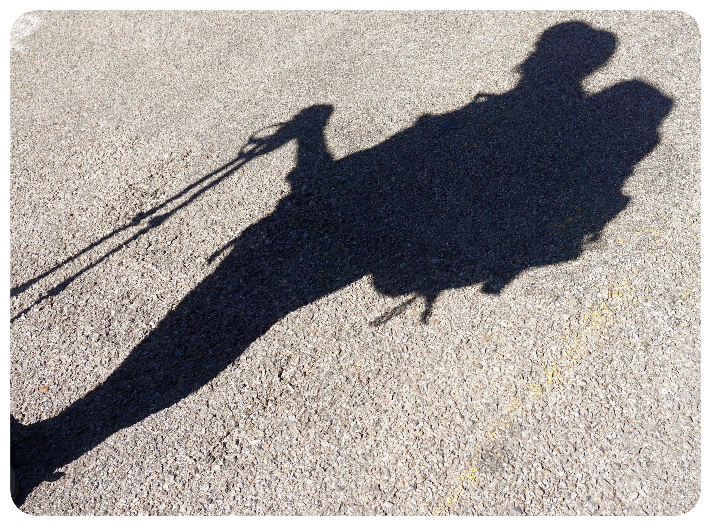 camino de santiago pilgrim silhouette