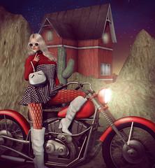 . night rider