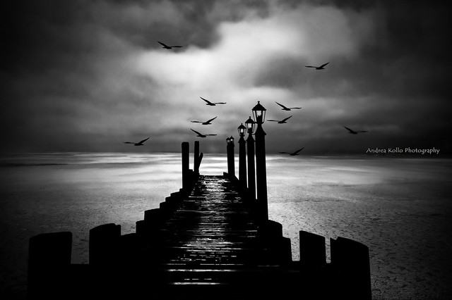 Sitting on the Dock of the Bay - BW
