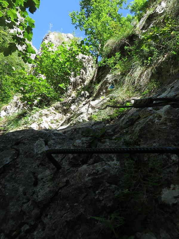 Romania - Rametului Gorges