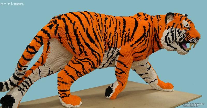 Το Ζωικό Βασίλειο από LEGO  - Σελίδα 7 37937435021_d87c0b1ce2_c