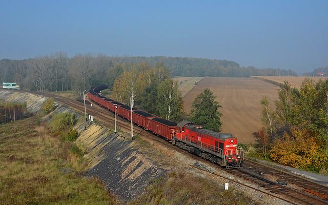 DB Cargo Polska TEM2-190 - Jastrzębie-Zdrój (PL)