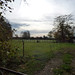 Small photo of Marsh Lane, Hampton-in-Arden - field with horses