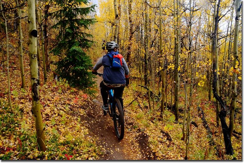 Colorado Trail (11)