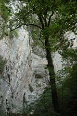 2015-07-04-18-13-14_Les Forts Trotters_dans le Haut Doubs