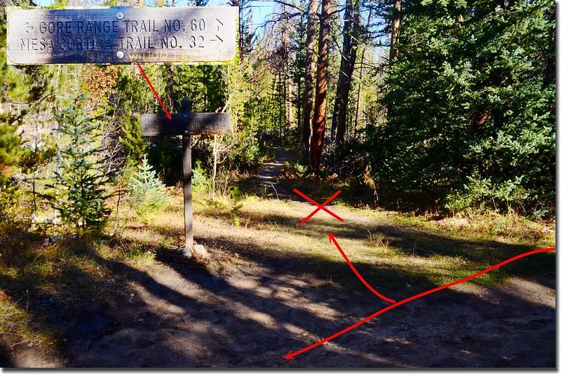 Mesa Cortina Trail & Gore Range Trail fork