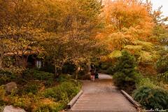 Bellevue Botanical Park