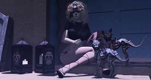 Muertos - Style1578a