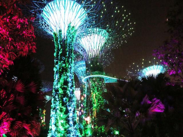 groove tree Gradini si Parcuri din Singapore 1