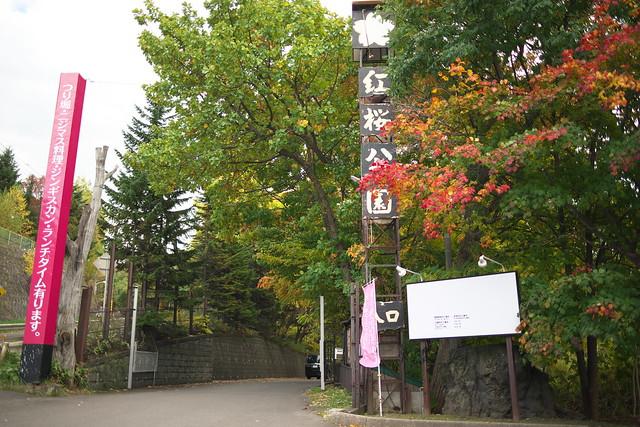 紅櫻公園 2017紅葉_01
