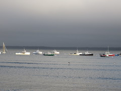 Boats In The Light By Lincolnville
